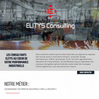 Elitys Consulting